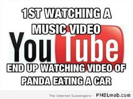 Youtube humor at PMSLweb.com