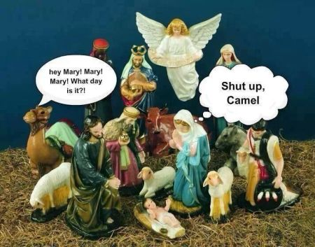 Christmas Camel Hump day funny at PMLweb.com
