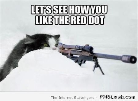 Let's see how you like the red dot meme at PMSLweb.com