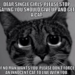 Dear single girls funny cat meme at PMSLweb.com