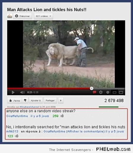 Man attacks Lion and tickles his nuts at PMSLweb.com