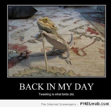 Back in my day demotivational – Pmsl Thursday at PMSLweb.com