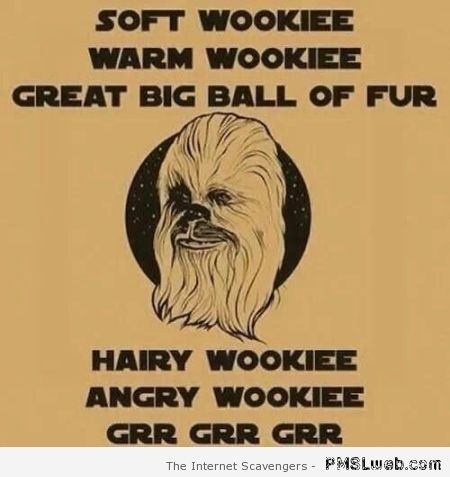 Soft wookie warm wookie – Tgif humour at PMSLweb.com