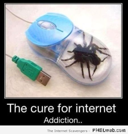 The cure for internet addiction at PMSLweb.com