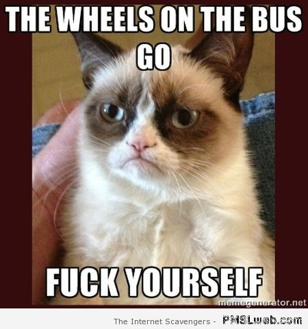Grumpy cat the wheels on the bus go at PMSLweb.com