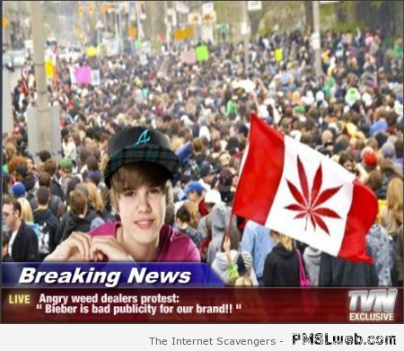 Weed dealers protest against bieber at PMSLweb.com