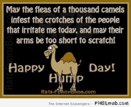 May the fleas of a thousand camels at PMSLweb.com