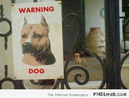 Dog warning funny – New week humor at PMSLweb.com