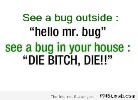 See a bug outside humor at PMSLweb.com