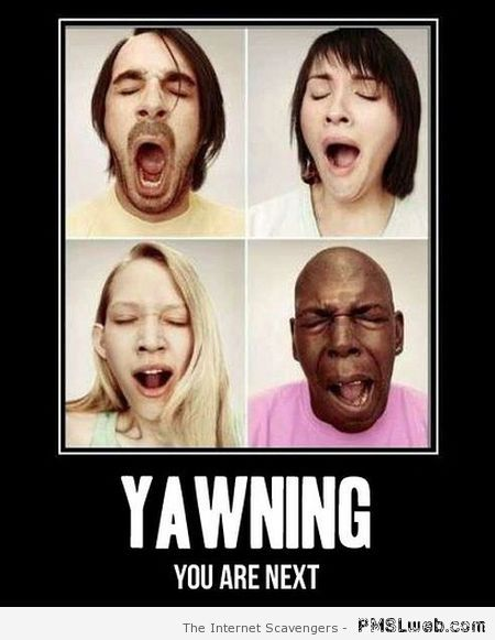 Yawning you are next – Funny Monday pictures at PMSLweb.com
