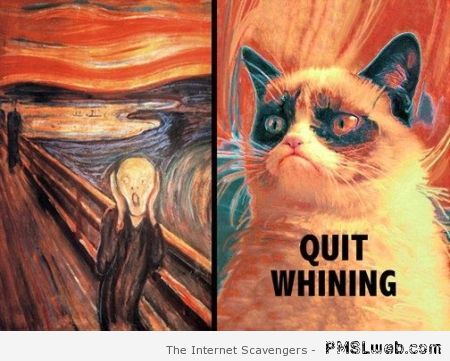 The scream and grumpy cat – Friday laughter at PMSLweb.com