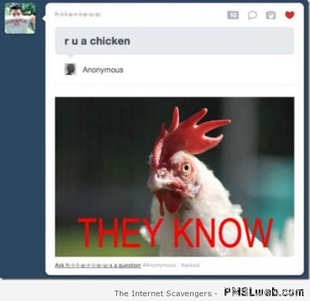 You are a chicken funny tumblr comment at PMSLweb.com