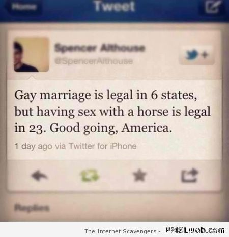 Having sex with a horse is legal tweet at PMSLweb.com