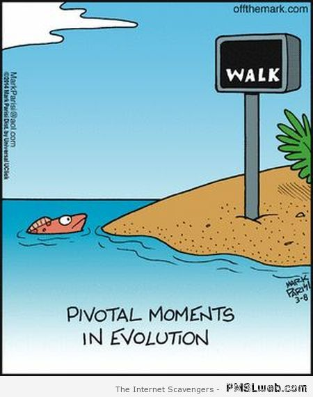 Pivotal moments in evolution cartoon at PMSLweb.com