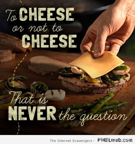 To cheese or not to cheese at PMSLweb.com