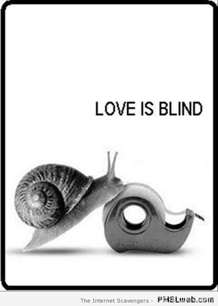 Love is blind snail humor at PMSLweb.com