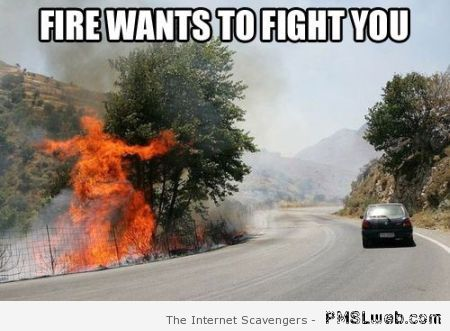 Fire wants to fight you meme at PMSLweb.com