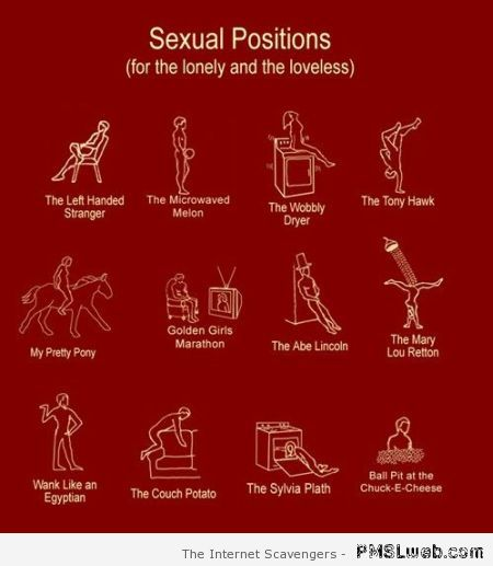 Sexual positions for the lonely at PMSLweb.com