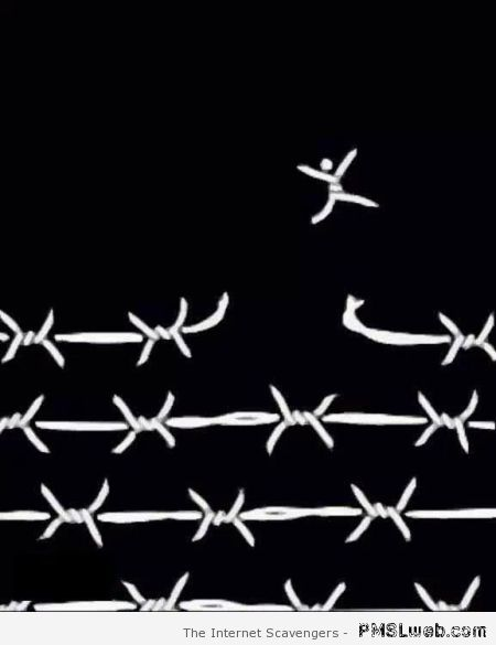 Funny Barbwire freedom – Funny Hump day images at PMSLweb.com