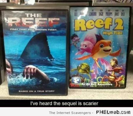 The reef movies funny at PMSLweb.com