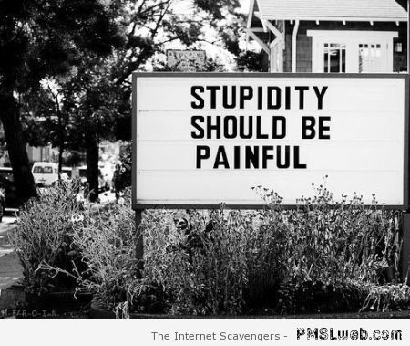 Stupidity should be painful at PMSLweb.com