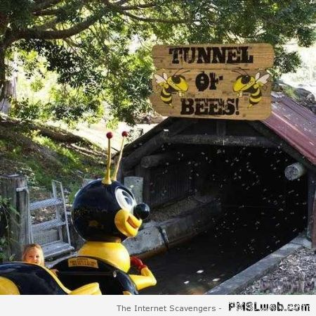 Tunnel of bees funny at PMSLweb.com