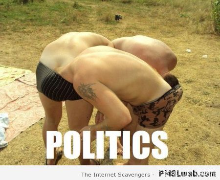Politics meme at PMSLweb.com