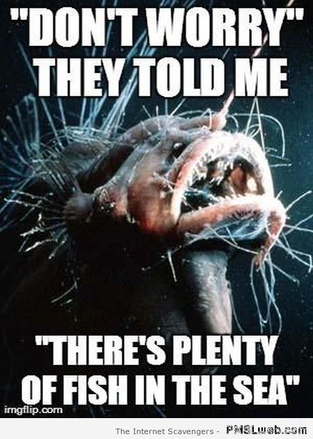 22 there s plenty fish in the sea meme 22 there s plenty fish in the sea meme pmslweb