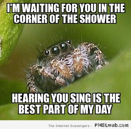 Funny sing in the shower spider meme at PMSLweb.com