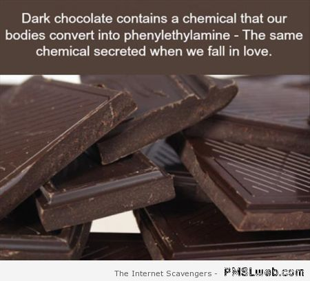 Interesting fact about chocolate – Miscellaneous pics at PMSLweb.com