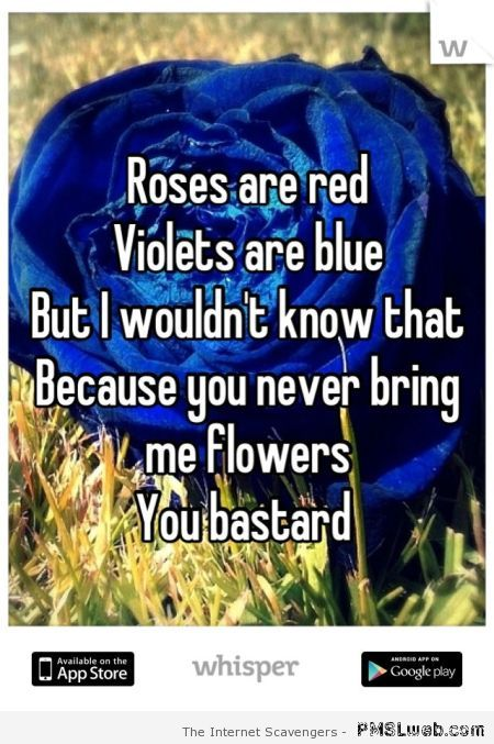 Roses are red funny quote at PMSLweb.com
