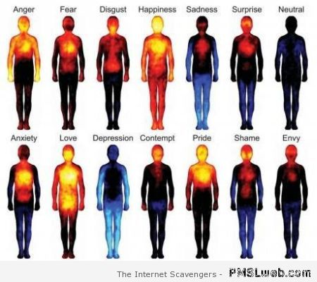 Body heat and emotions at PMSLweb.com