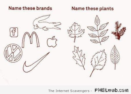 Name these brands at PMSLweb.com
