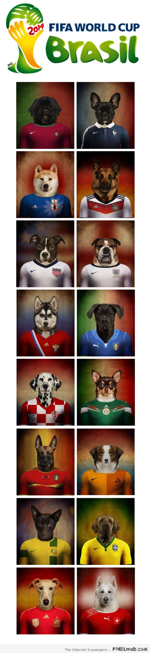 Fifa world cup dogs – FIFA World cup humor at PMSLweb.com