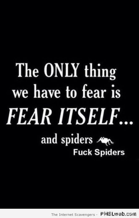 Funny fear spiders quote at PMSLweb.com