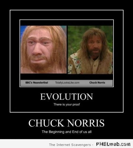 Chuck Norris evolution – Furious Hump day at PMSLweb.com