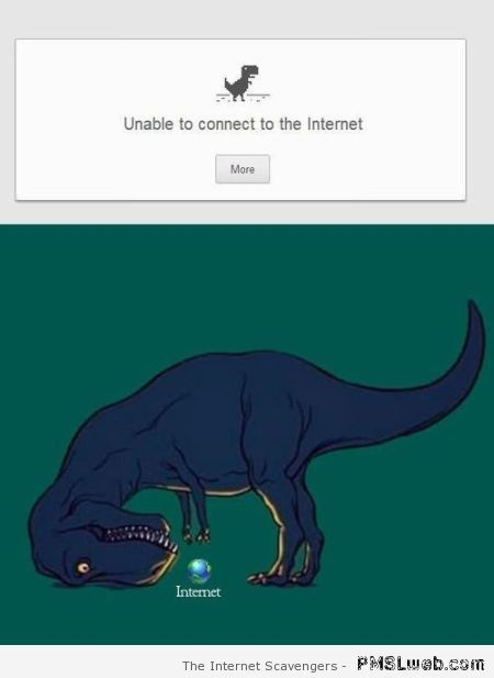 Dino unable to connect to the internet at PMSLweb.com