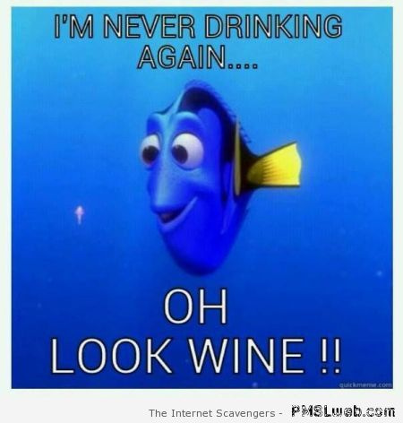 I'm never drinking again humor at PMSLweb.com