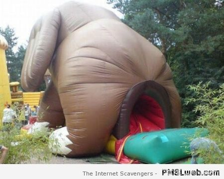 Elephant blow up slide at PMSLweb.com