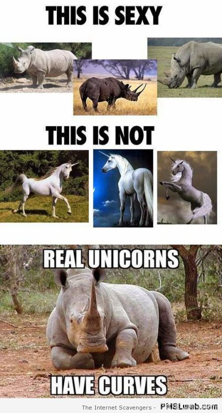 Real unicorns have curves at PMSLweb.com