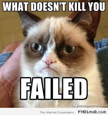 What doesn't kill you grumpy cat at PMSLweb.com