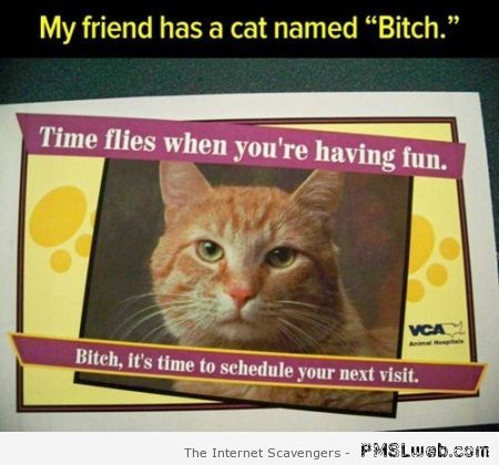 My friend has a cat named b*tch at PMSLweb.com