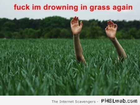 Drowning in grass edit at PMSLweb.com