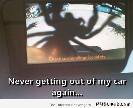 Safety camera and spider at PMSLweb.com