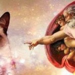 Creation-of-Adam-and-grumpy-cat