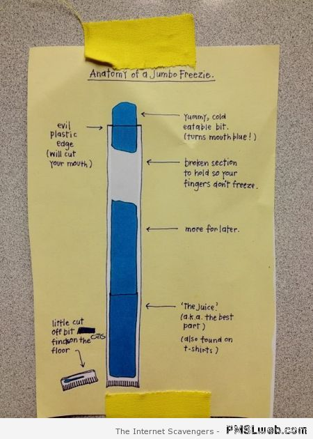 Anatomy of a jumbo freezie – Funny Saturday pics at PMSLweb.com