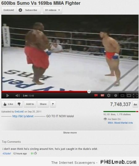 Funny sumo youtube comment at PMSLweb.com