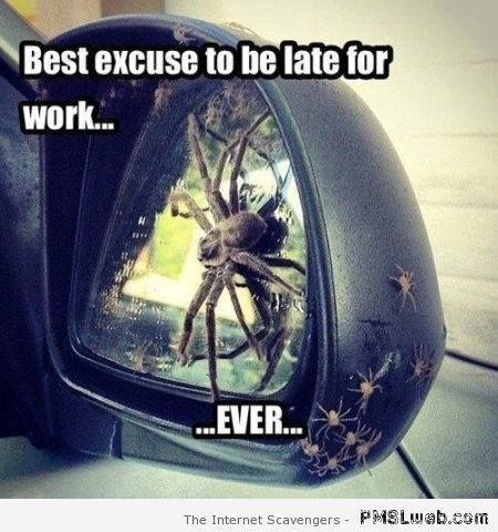 Best excuse to be late for work at PMSLweb.com