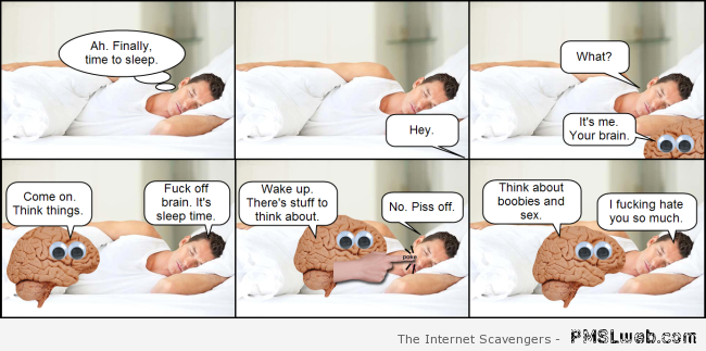 The brain is a scumbag – Funny Saturday pics at PMSLweb.com