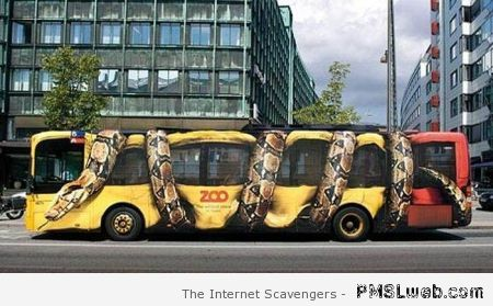 Awesome snake painting on bus at PMSLweb.com